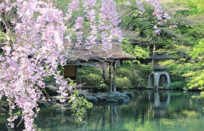 八芳園 2
